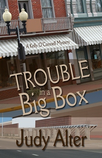 Trouble Big Box